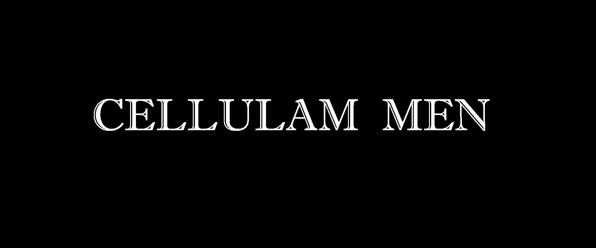 セルラムMEN-TOP3